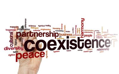 Diversity Coexistence: Deploying Respect and Peace