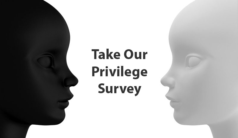 privilege survey